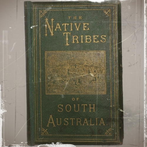 nativetribessa
